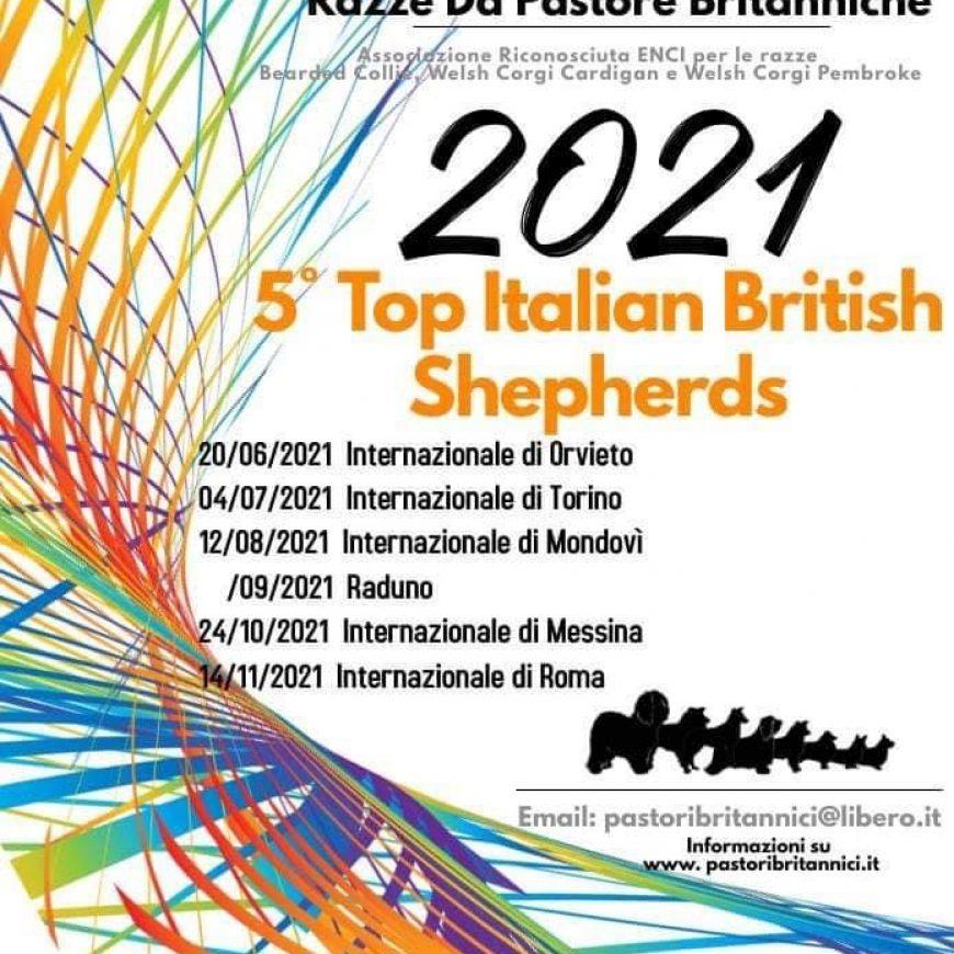 Risultati della 1 ° Tappa del 5° Top Italian British Shepherds