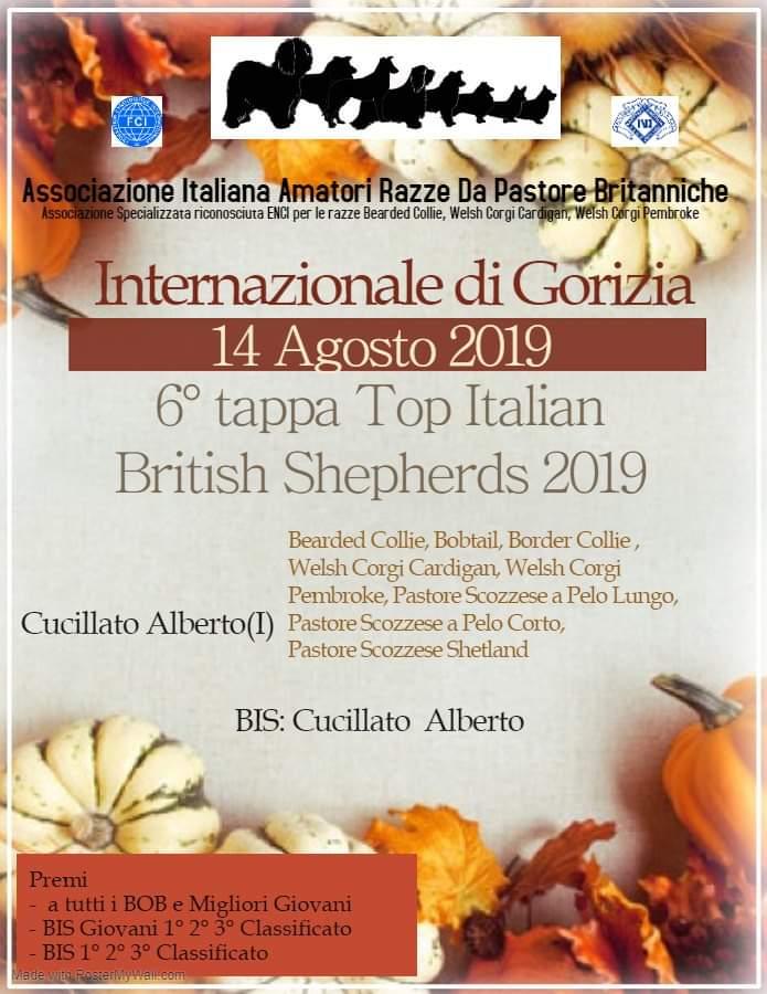 Risultati Internazionale di Gorizia e Sanremo 2019