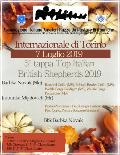 Internazionale di Torino 07/07/2019