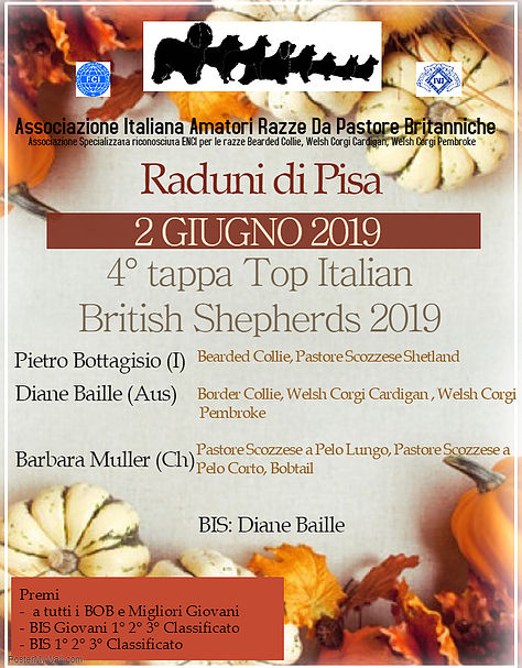 Raduni di Pisa 1° Giugno 2019